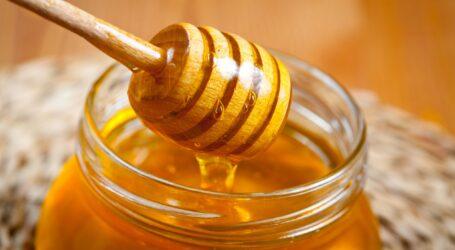 Μέλι, το χρυσάφι της διατροφής μας