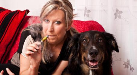 Παθητικό κάπνισμα: Πόσο επηρεάζει την υγεία του σκύλου και της γάτας